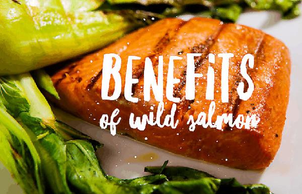 benefits of wild salmon