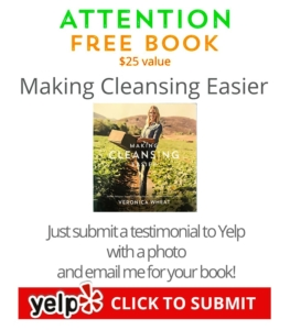 chefv-free-book-with-with testimonial and photo