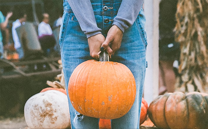 Fall in love with pumpkins