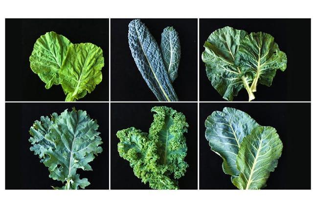 antioxidant vegetables