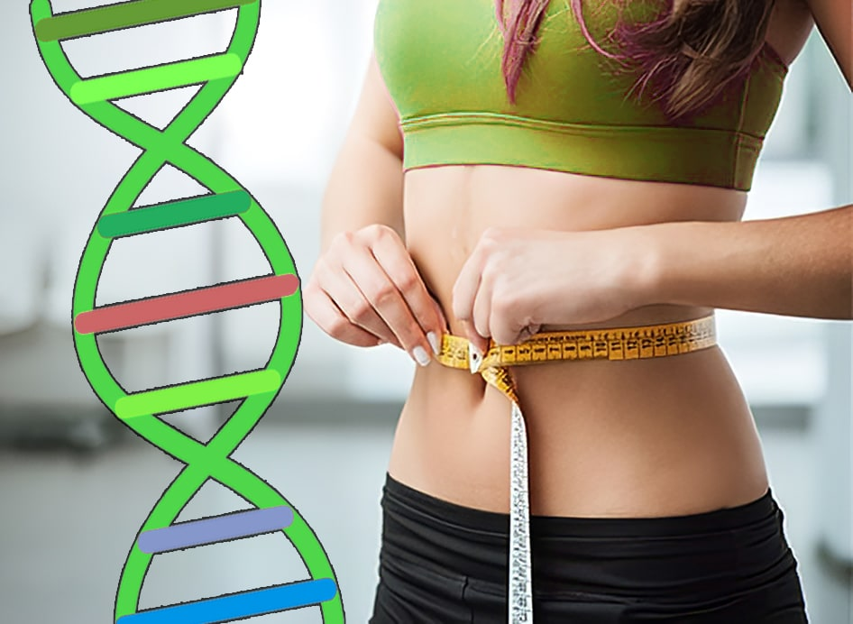 DNA testing for exercise optimization