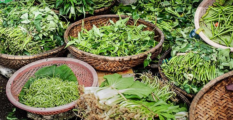 Supplements versus greens